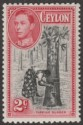 Ceylon 1938 KGVI 2c Black and Carmine perf 11½x13 Mint SG386