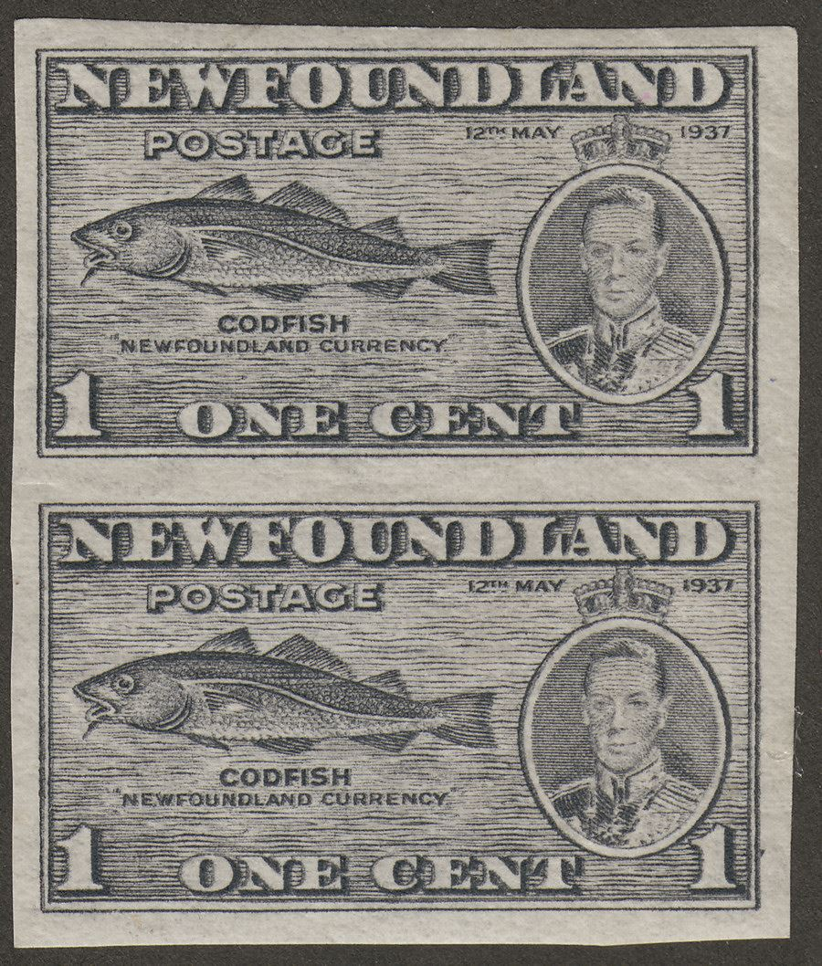 Newfoundland 1937 KGVI Coronation Cod 1c Variety Imperforate Pair Mint SG257 var